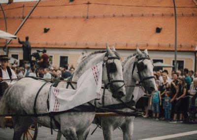 52_djakovacki_vezovi_foto_marko_milas (152)